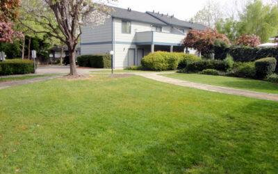 2167 Meadowbrook Court, Unit D